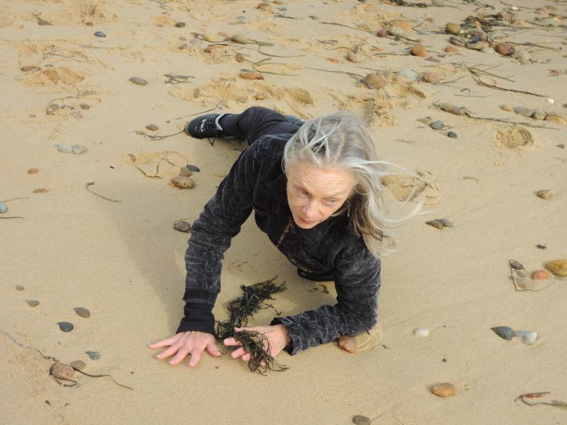 olsen-seaweed